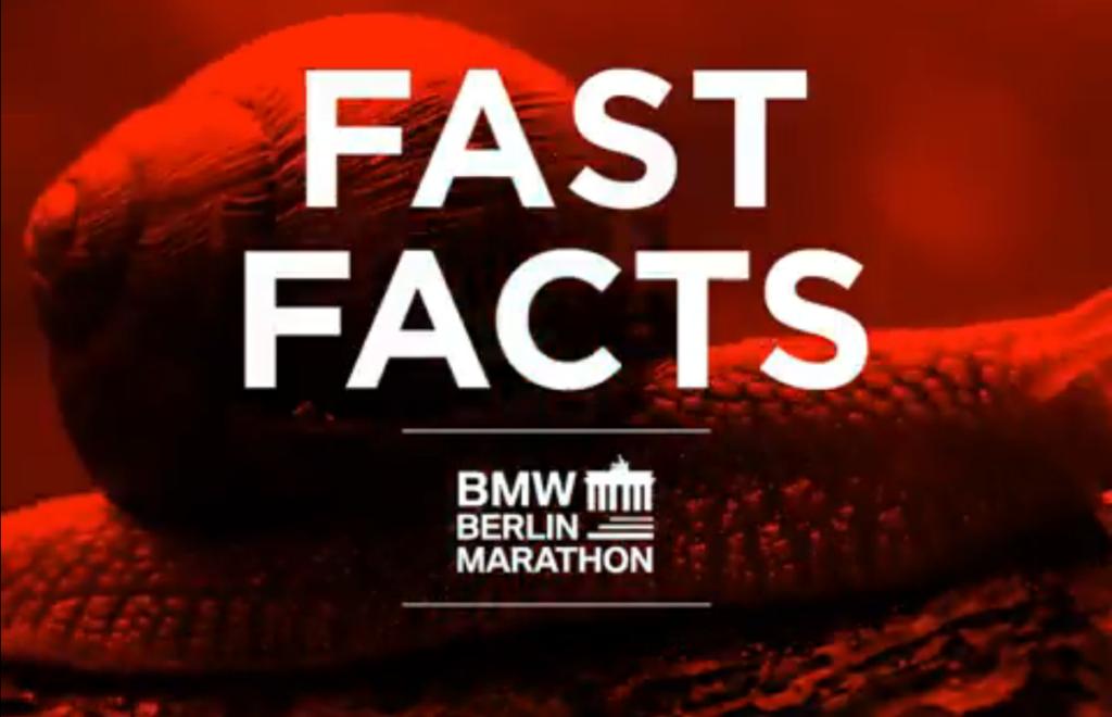 10 Fakten zum Berlin-Marathon