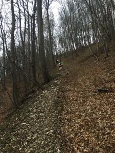 Trail-010