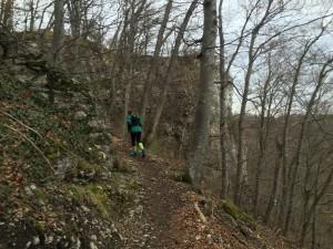 Trail-011